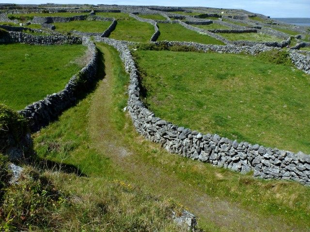 Inis Oírr fields