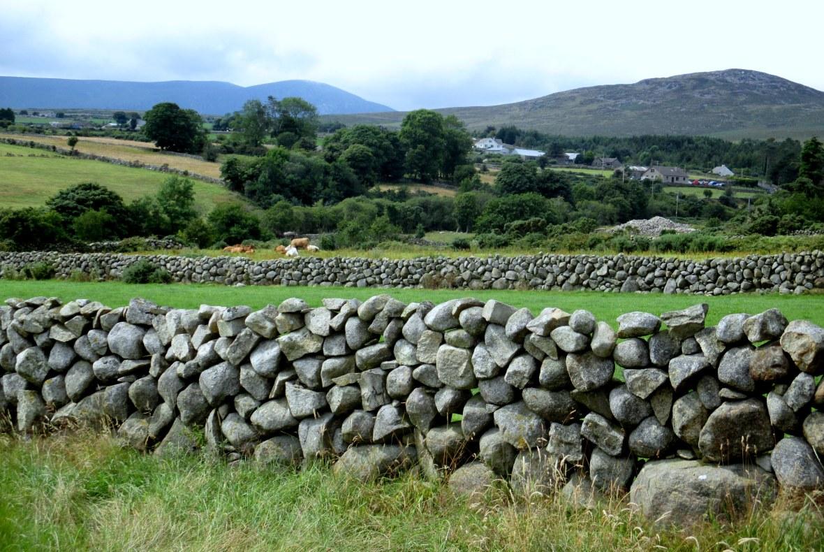 Mourne field walls