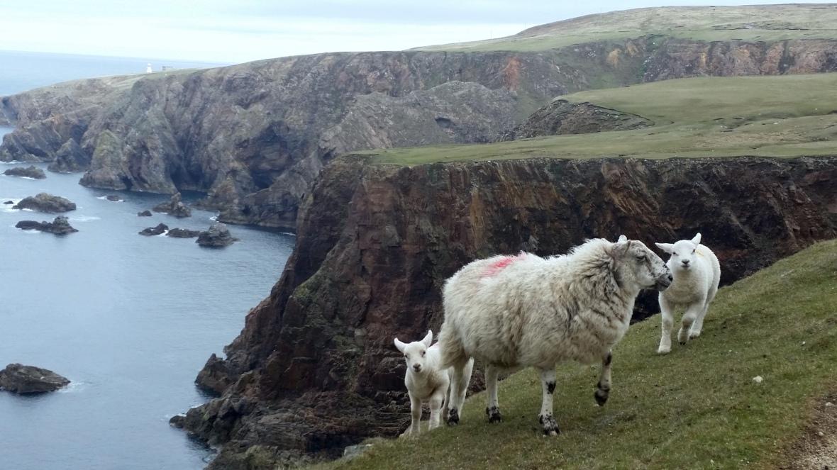 cliffs Aran Mór